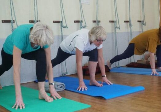 Community Yoga for Absolute Beginners- Adult Session