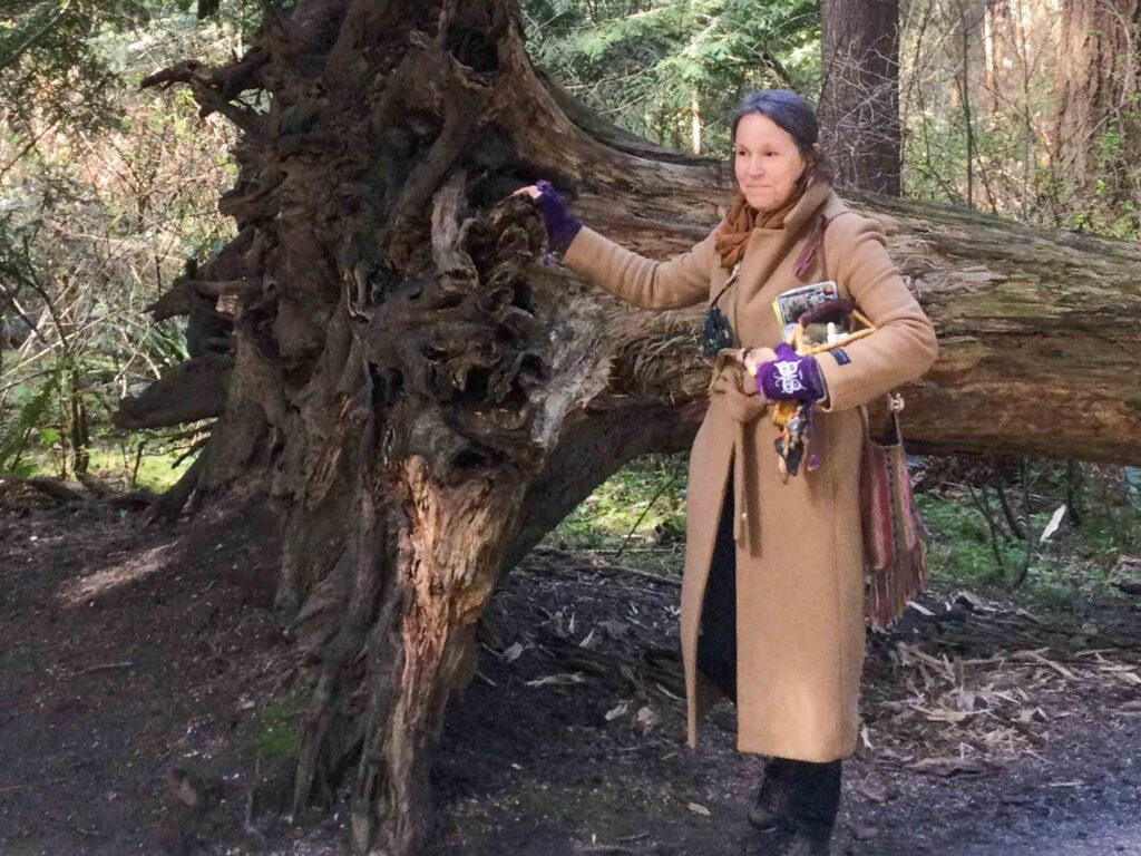 Reconnecting with Nature with a Herbalist Plant Walk